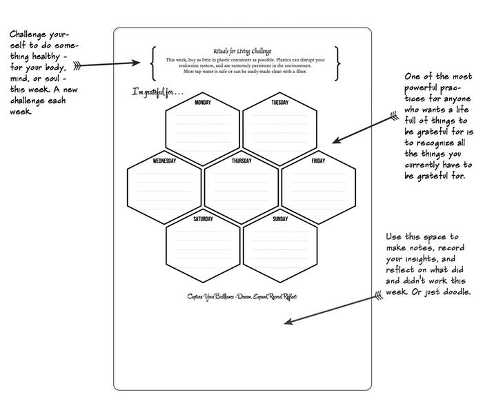 RITUALS FOR LIVING DREAMBOOK PDF DOWNLOAD